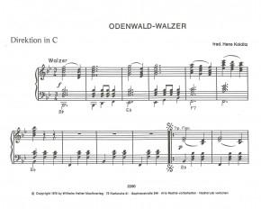 Odenwald Walzer (Tief im Odenwald)